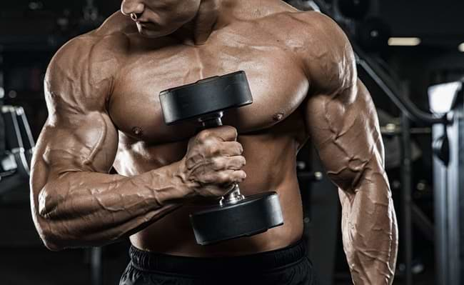 muscle pump comprehensive guide